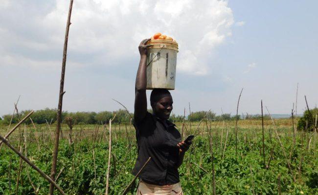 Forget Sewing Machines: Cherehani Africa is Democratizing Entrepreneurship